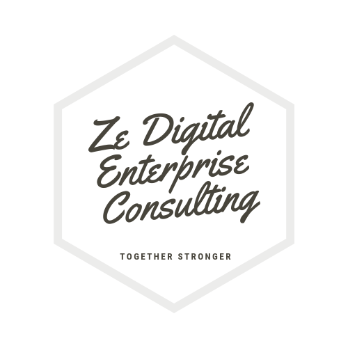 Ze Digital Enterprise Consulting logo transparent